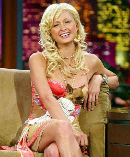 Paris Hilton, empresária e socialite do mundo