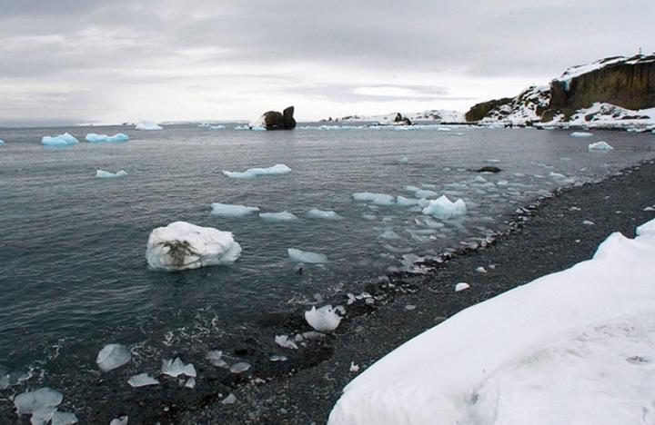 Antartica e o Circulo Polar Artico russo vivem calor de 38 graus. Cientistas estudam razoes.