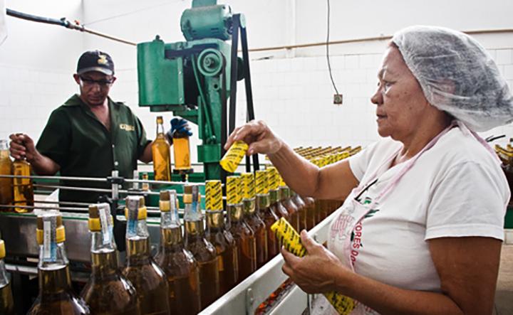 Segmento das media e pequenas empresas gera 70% dos empregos no mundo. Foto PNUD, Kenia Ribeiro.