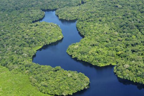 Com floresta como Amazonica, Brasil pode lucrar em investimentos e ajudar setores de infraestrutura.