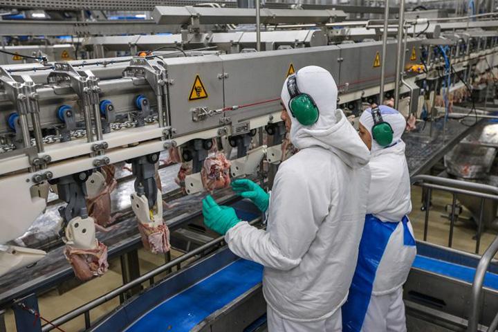 Protocolo do Governo assegura rigor sanitario em frigorificos. Foto AgdeNoticiasdoPr,Geraldo Bubniak