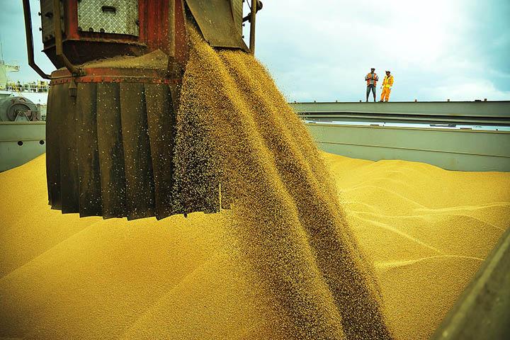 Aumentam os paises dependentes de commodities. Aqui em Paranagua, embarque de soja.
