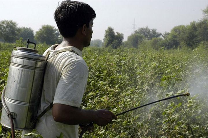 Pesticidas serão extintos na produção agrícola. Técnicos das Nações Unidas definem tratado global.