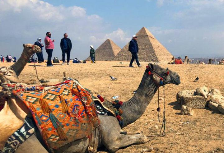 Piramides de Gize, Egito, reabrem sob expectativa de movimento além do normal. Camelos tambem atraem