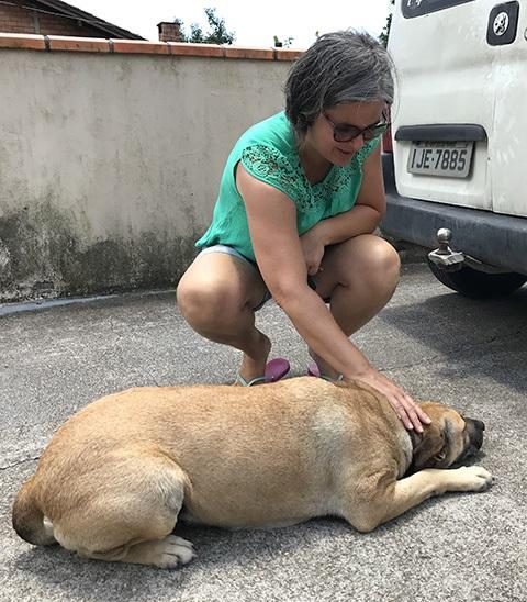 Suzy, a cadela que trocou de dono por mais carinho